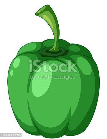 A green capsicum on white background illustration