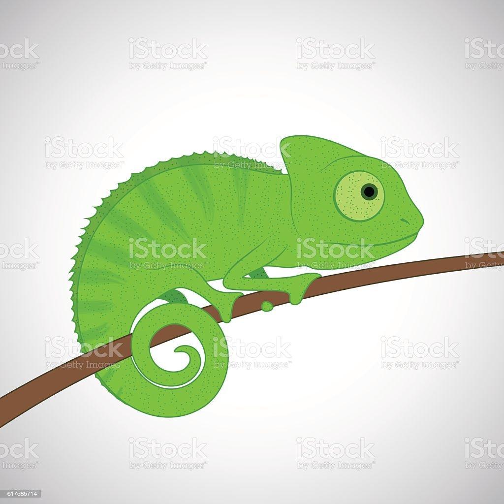 Green Cartoon Chameleon Stock Illustration Download Image Now Istock