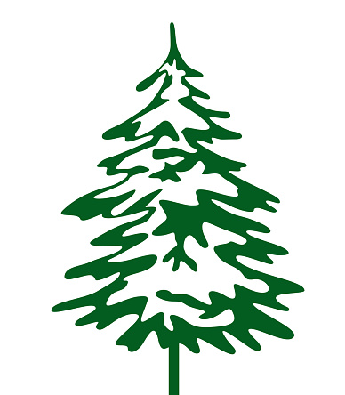 Green Christmas Tree. Vector illustration and Icon. Winter Spruce.
