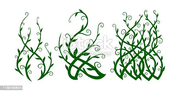 Beautiful green clip arts with ornate liana shapes on white background