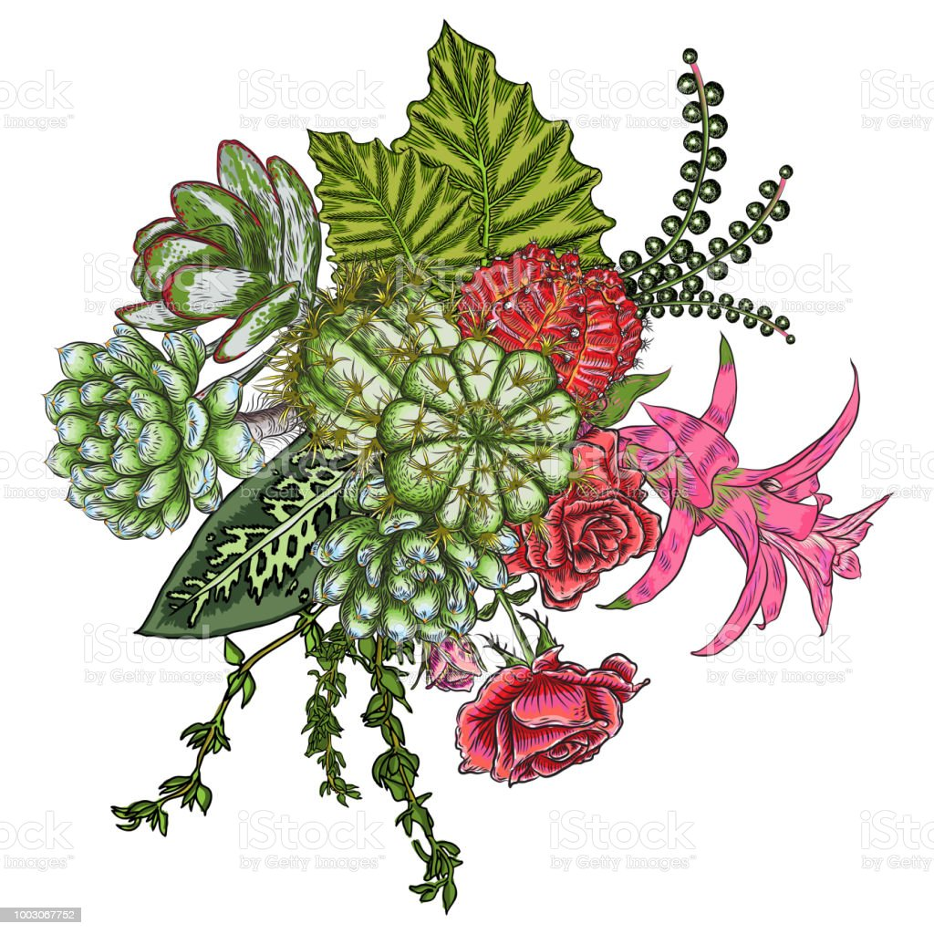 Green Colorful Succulent Bouquet Ikebana Tattoo Concept Selection Of ...