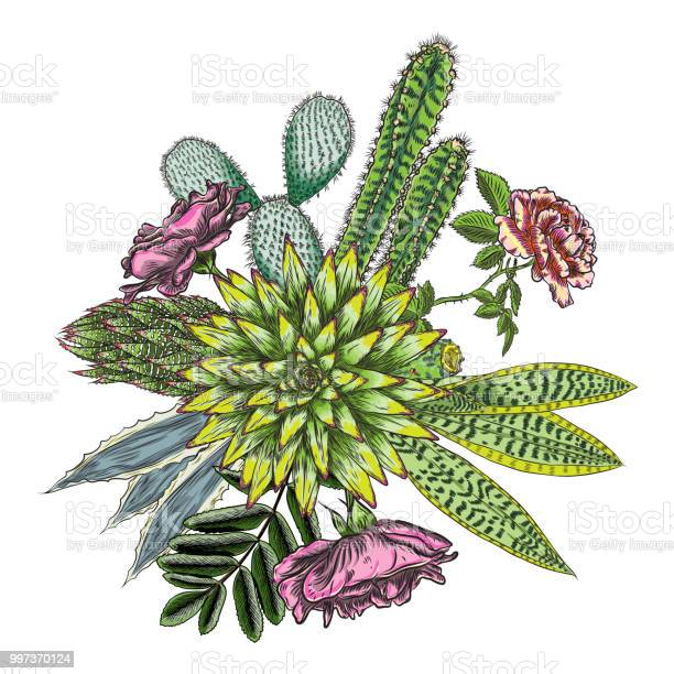 Green colorful succulent bouquet ikebana tattoo concept selection of vector id997370124?b=1&k=6&m=997370124&s=612x612&h=jgbbxi0l nlhh 7y3e6njpsw7m0 83ry4htzm9bbpqg=