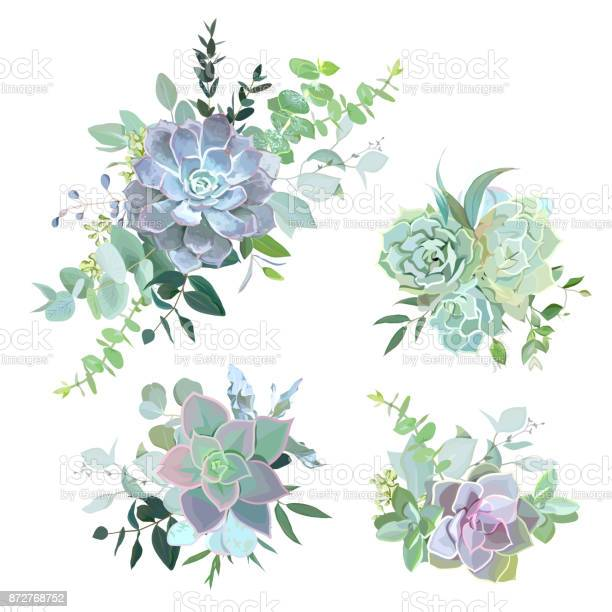 Green colorful succulent bouquets vector design objects vector id872768752?b=1&k=6&m=872768752&s=612x612&h=fcyxijucgcyqporemfvrzi5svybnpa 3q4htq2kzoys=