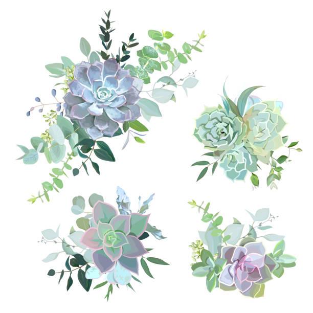 Ramos suculentos colores verdes vector de objetos de diseño - ilustración de arte vectorial