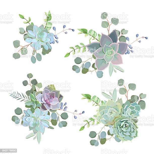 Green colorful succulent echeveria vector design objects vector id545778650?b=1&k=6&m=545778650&s=612x612&h=pl2nxbmziizlda nqoilqfjgygj63dydse9ejfq6mys=