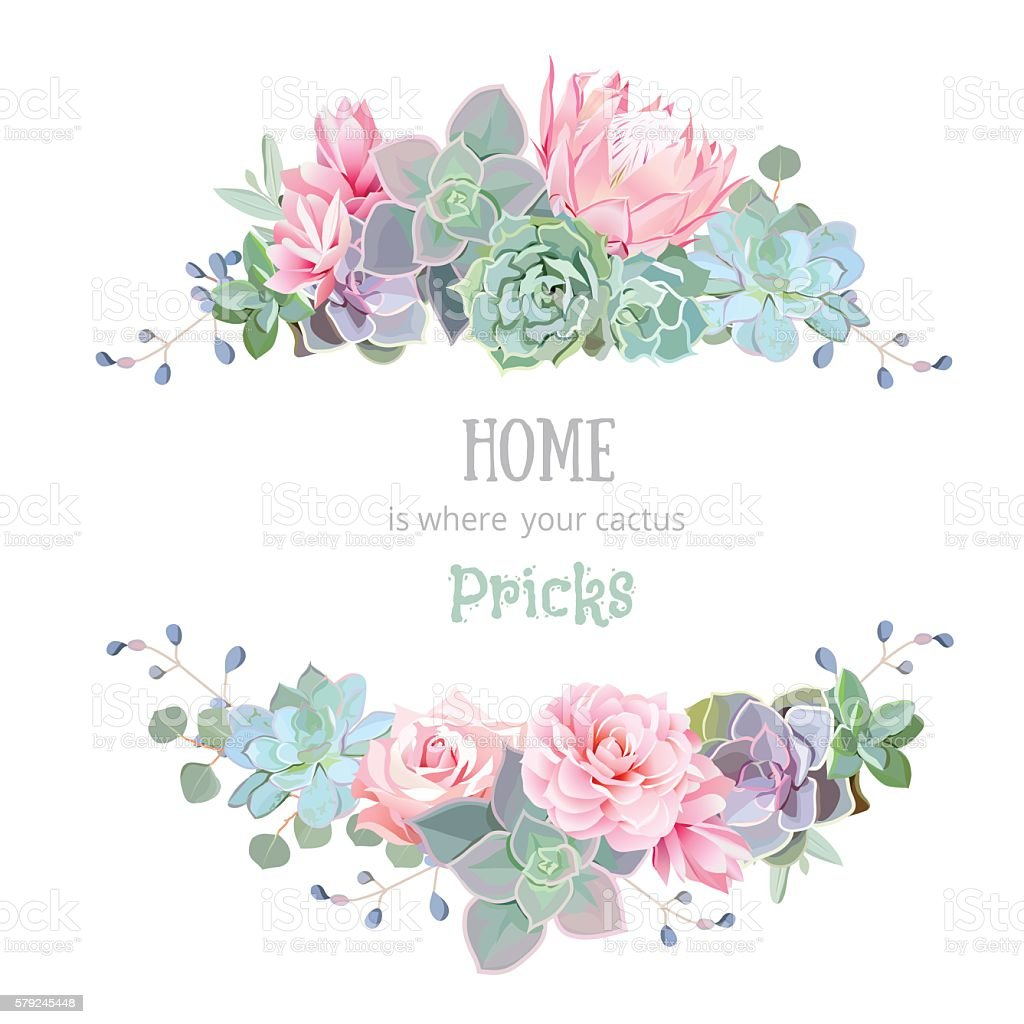 Green Colorful Succulents Vector Design Round Frame