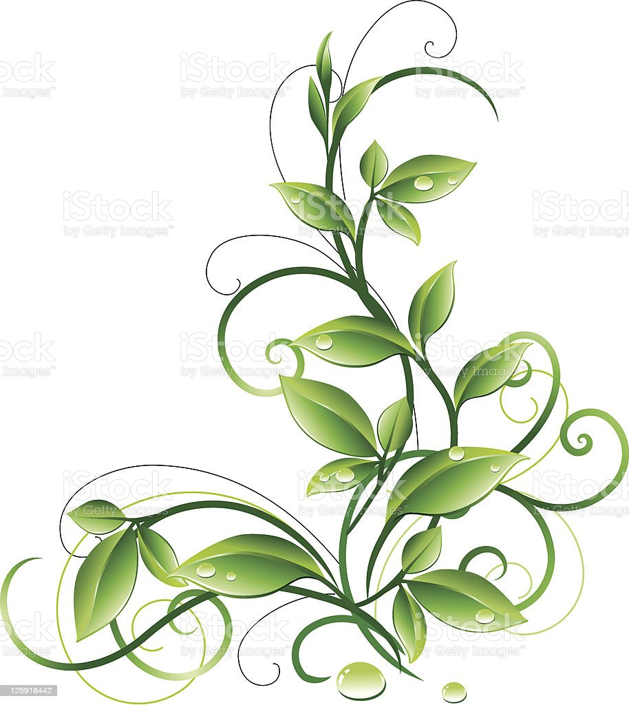 Green design vector art illustration