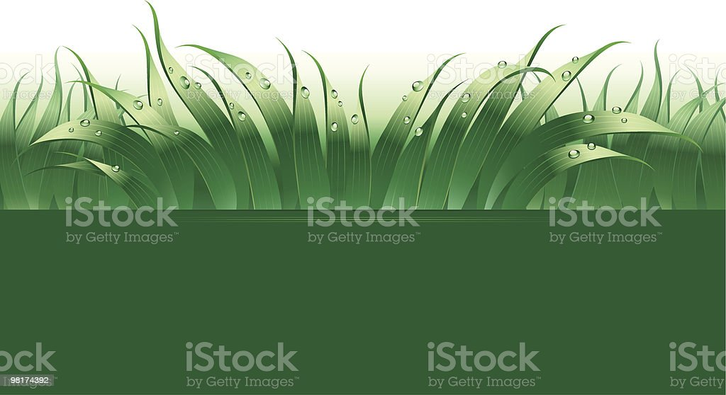 Green Design royalty-free green design stock vector art & more images of abstract