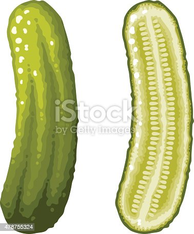 A whole green dill pickle and a cross section icons. No gradients or transparencies used in this file. Download includes an AI10 CMYK vector EPS as well as a high resolution RGB JPEG file.