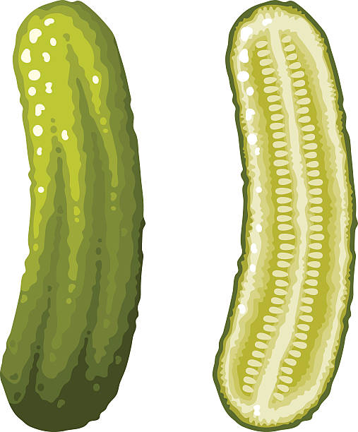 Green Dill Pickle Icons, Whole and Sliced A whole green dill pickle and a cross section icons. No gradients or transparencies used in this file. Download includes an AI10 CMYK vector EPS as well as a high resolution RGB JPEG file. pickle slice stock illustrations