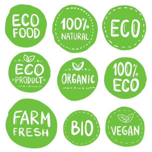 Grüne Eco Food Etiketten. Gesundheitsüberschriften. Vector Illustration Collection – Vektorgrafik