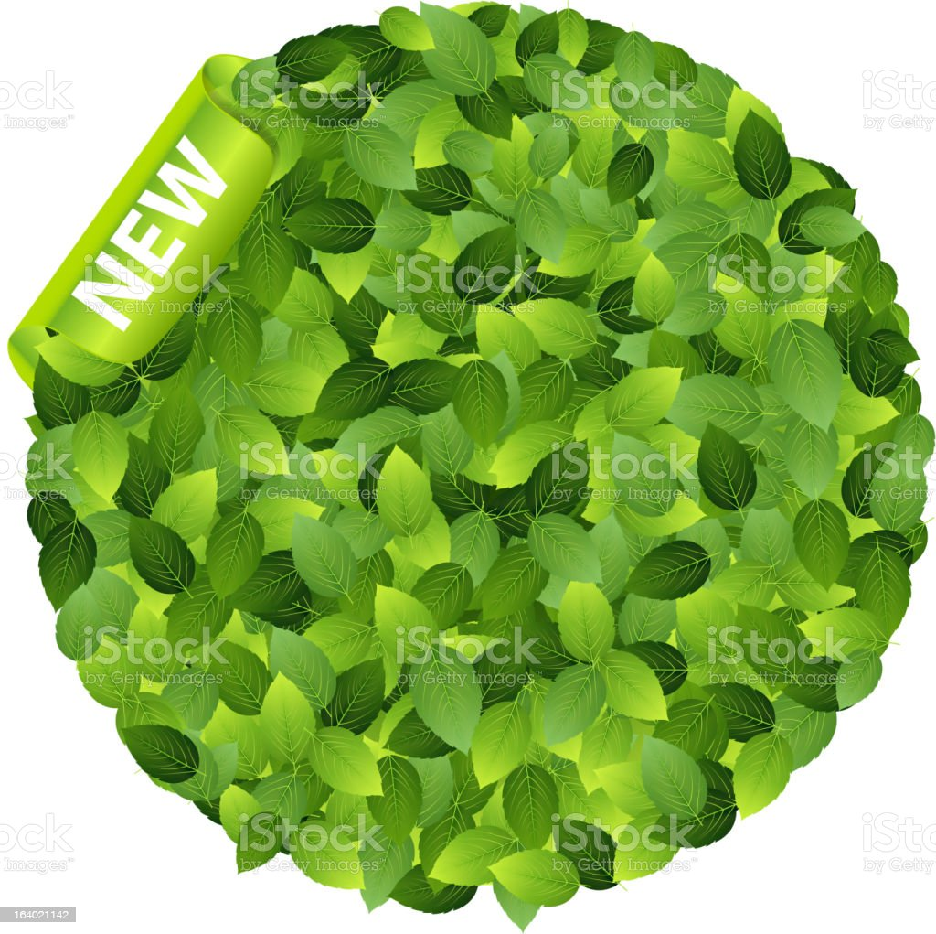 Green eco friendly label from leaves Vector illustration royalty-free green eco friendly label from leaves vector illustration stock vector art & more images of abstract