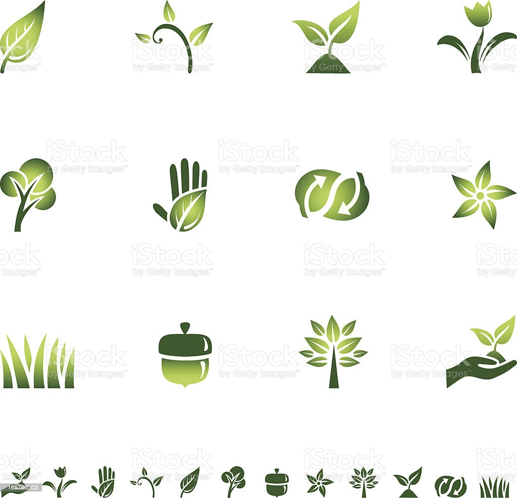 Green Eco Icons royalty-free green eco icons stock vector art & more images of acorn
