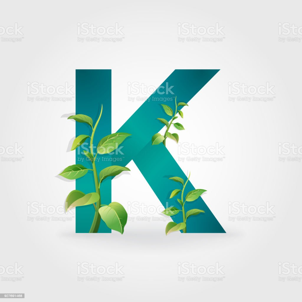 Green Eco Letters Logo With Leaves Royalty Free