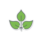 Green Environment Line Icon Leaves