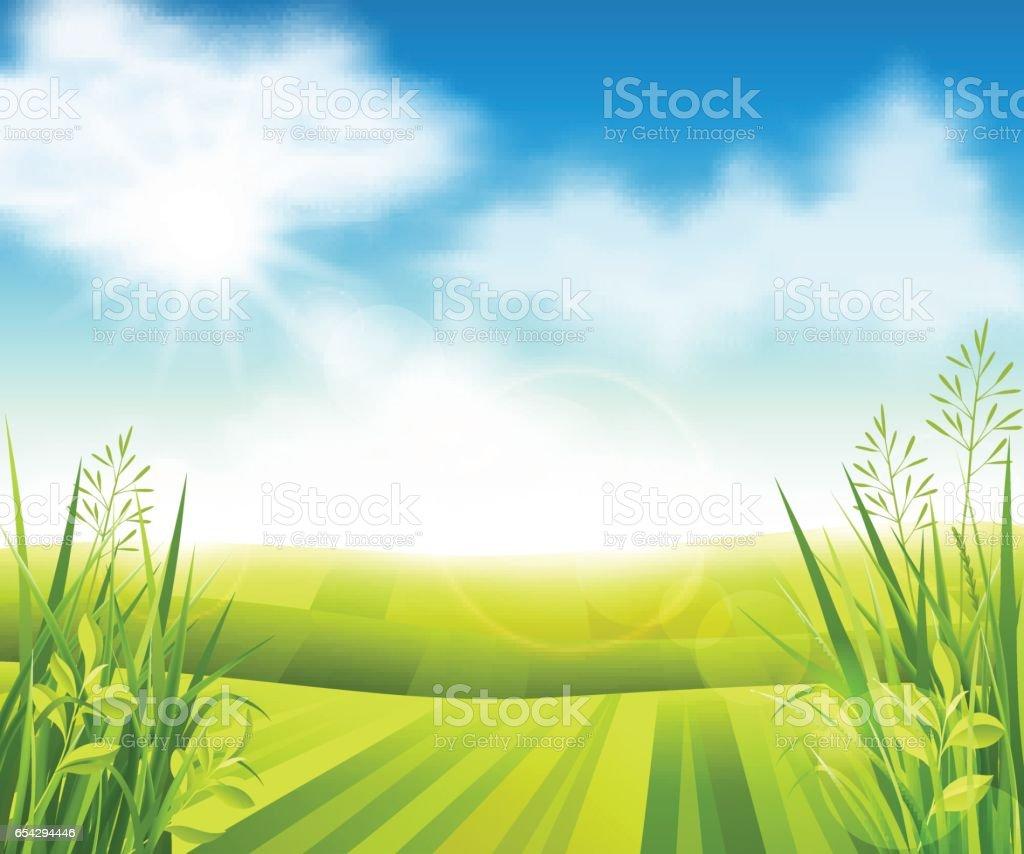 Green farm field vector art illustration