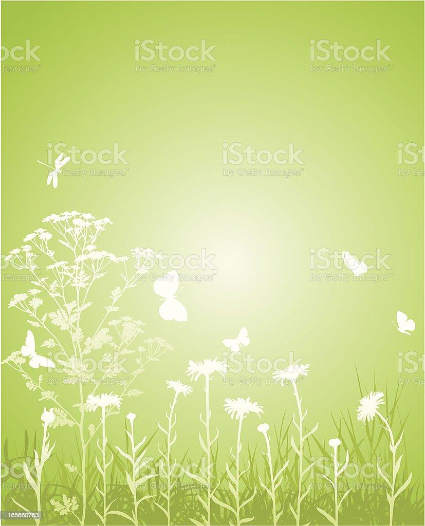 Green field royalty-free stock vector art