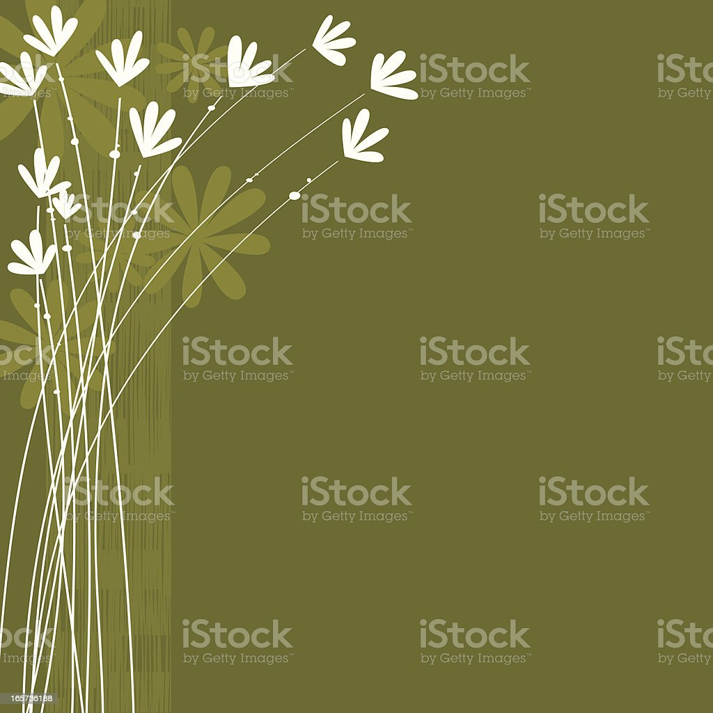 Green floral background - Royalty-free Backgrounds stock vector