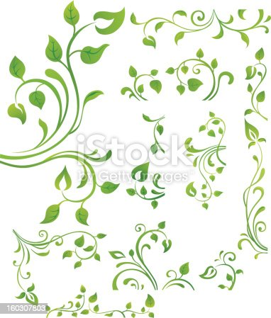 istock Green floral element 160307803