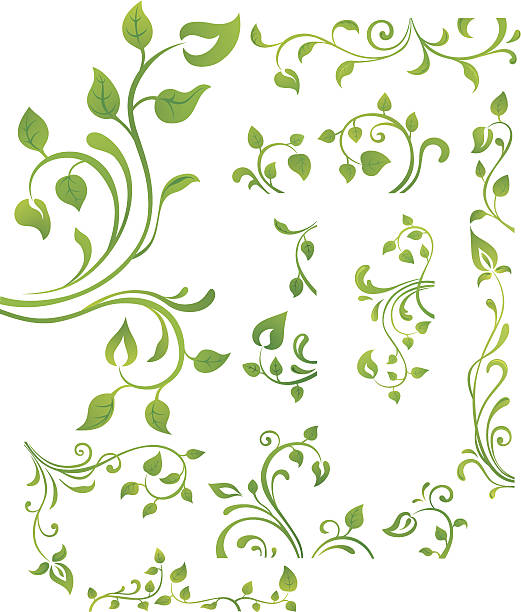 green floral element - vine stock illustrations, clip art, cartoons, & icons