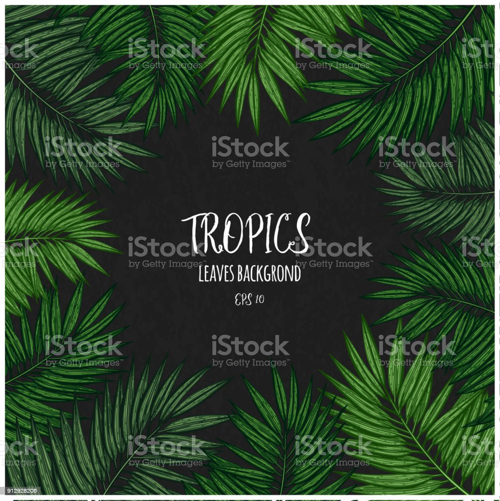 Green Floral Frame With Tropical Leaves Botanical Design Template
