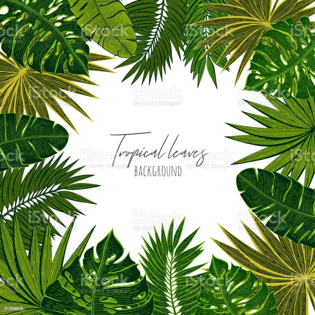 Grüne Blumenrahmen mit tropischen Blättern. Botanische Designvorlage für Hochzeits-Einladungen, Grußkarten, Postkarten, Webdesign, social-Media, Etiketten, Verpackungs-Design, Rahmen für Zitate. – Vektorgrafik