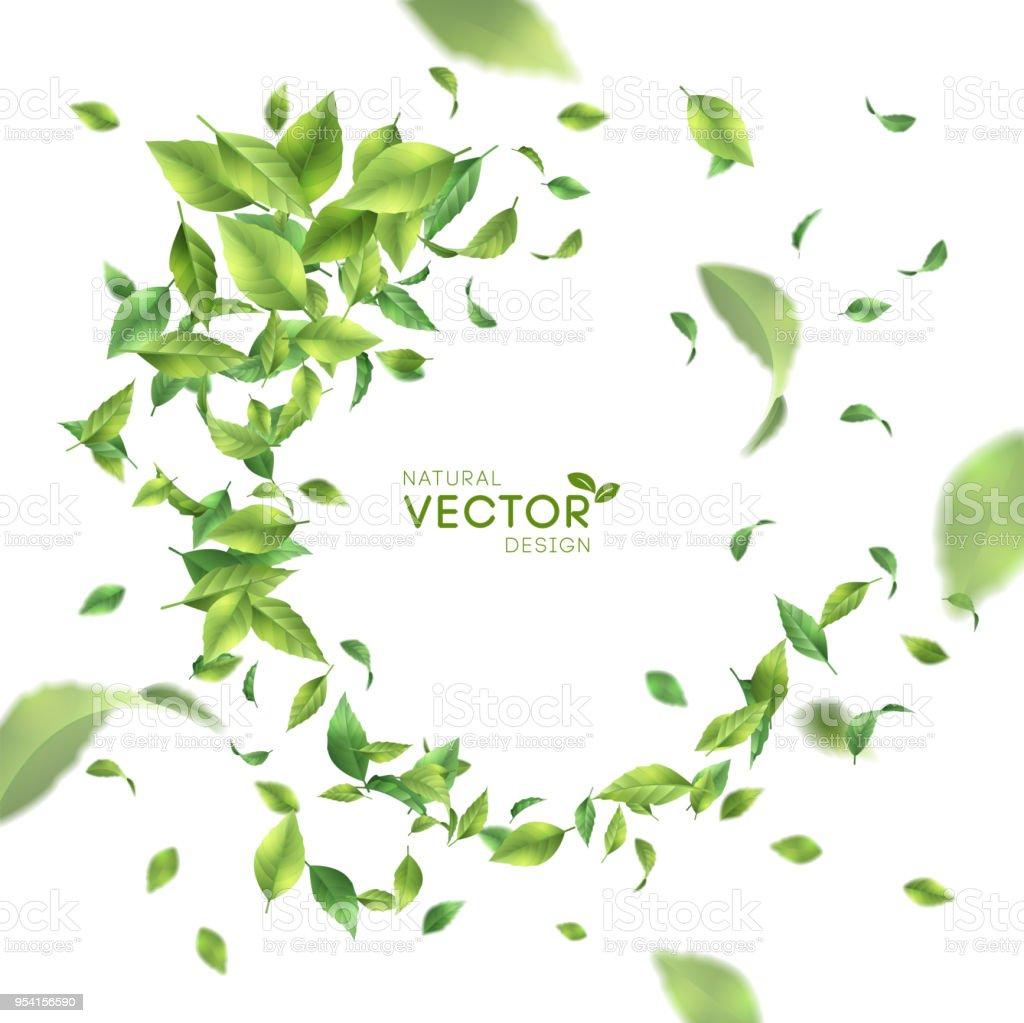 綠飛葉 - 免版稅俄羅斯圖庫向量圖形