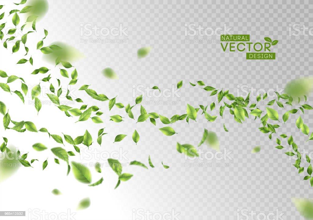 Folhas verdes voando - Vetor de Abstrato royalty-free