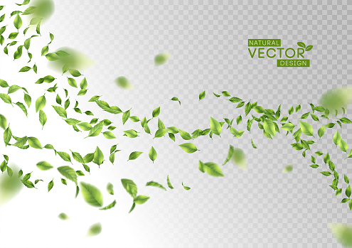 Green Flying Leaves clipart