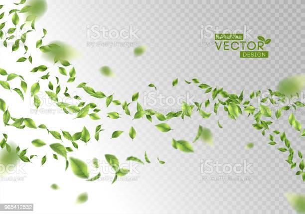 Vetores de Folhas Verdes Voando e mais imagens de Abstrato