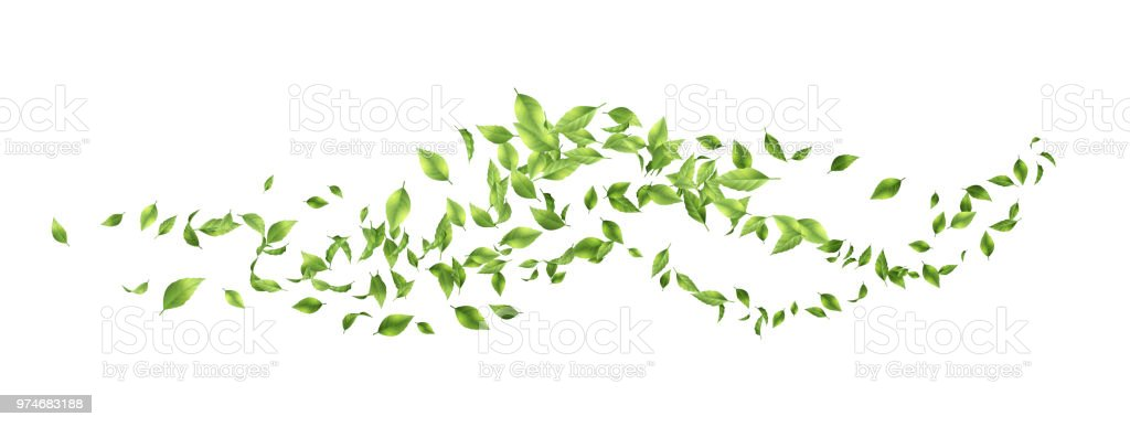 Green Flying Leaves vector art illustration