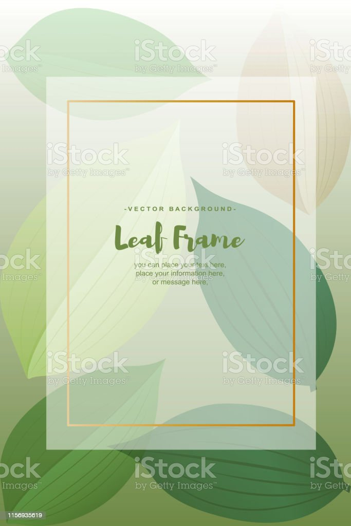 Springtime, Leaf, Environmental Conservation, Backgrounds, Wedding,...