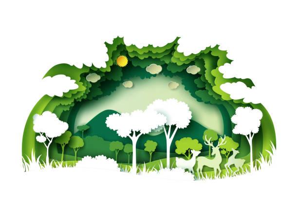 stockillustraties, clipart, cartoons en iconen met groene bossen en de natuur met natuur achtergrondlagen papier kunststijl - klimaat