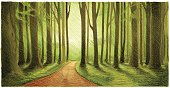 Image shows a green forest with sketchy style; vectorimage with only one layer, without opening shapes and gradients; big jpeg (350DPI); digital drawing with free wild style; fantasy drawing;