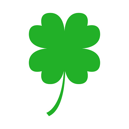 Green four leaf clover on white background. Vector