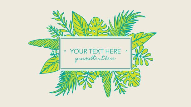 Cadre vert avec des illustrations dessinées à la main de feuille - Illustration vectorielle