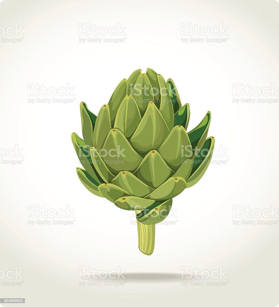 green fresh useful eco-friendly artichoke vector art illustration