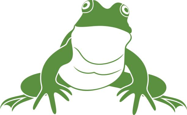 Best Toad Illustrations, Royalty-Free Vector Graphics ...