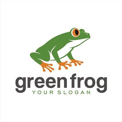 Green Frog orange
