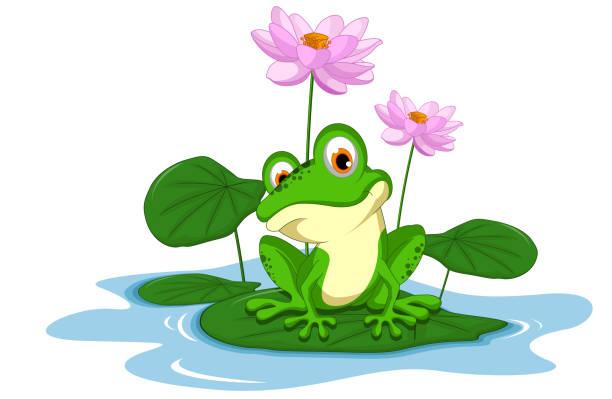 stockillustraties, clipart, cartoons en iconen met green frog sitting on a leaf - wildplassen