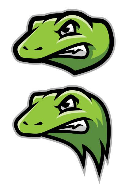 green gecko, lizard, reptile head logo mascot - dragon eye stock illustrations, clip art, cartoons, & icons