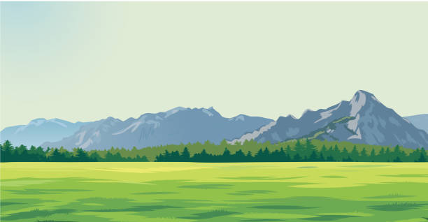 green glade against the background of mountains background drawing, green glade against the background of mountains grass area stock illustrations