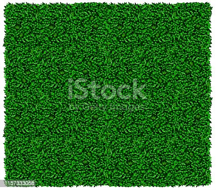 Texture of green wall of grapes or ivy. Vector graphics. Green leaves