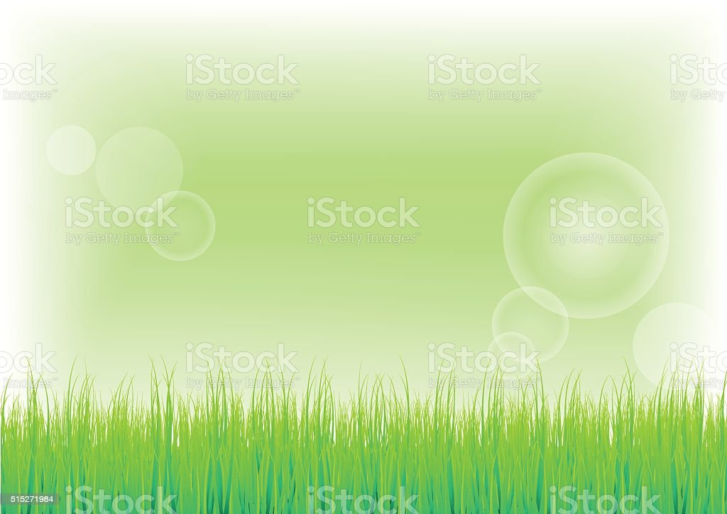 Green Grass and  background vector art illustration