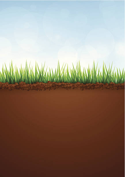 Royalty free soil clip art vector images illustrations for Soil clipart