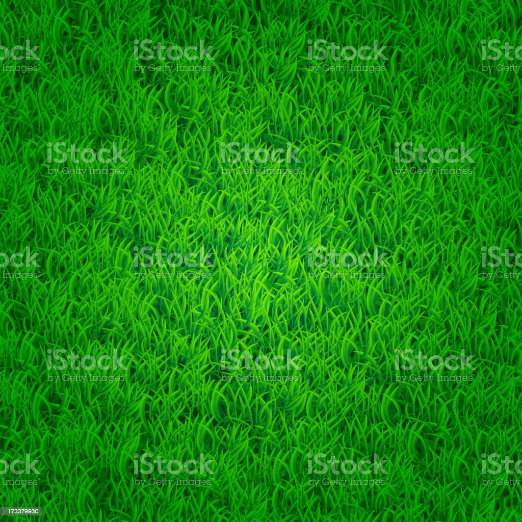 Green grass background royalty-free stock vector art