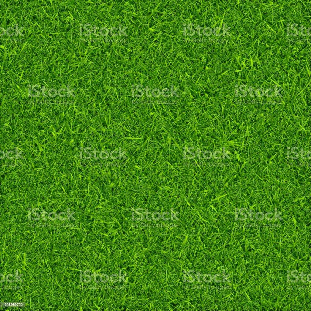 Green grass background vector vector art illustration