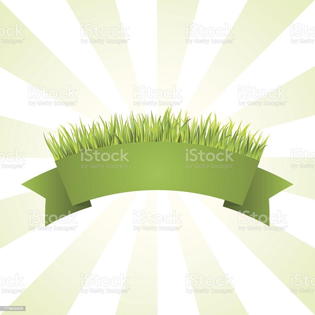 Green grass banner vector art illustration
