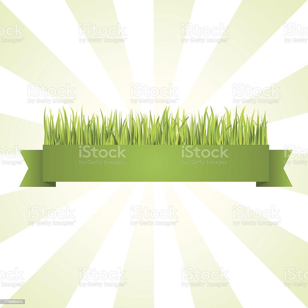 Green grass banner royalty-free stock vector art