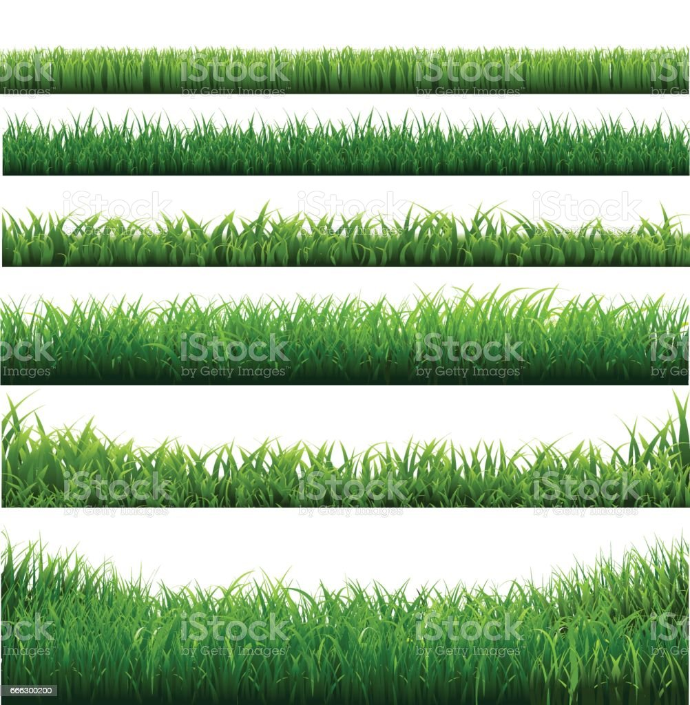 Green Grass Big Borders Collection vector art illustration